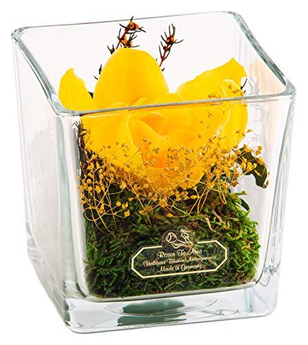 Rosen-Te-Amo – Konservierte Premium gelbe Orchidee im Würfel Vase handgefertigt aus 100% echten Dekorativen-Pflanzen und Moose; Haltbare Blumen im Kubik-Glass ohne Wasser haltbar