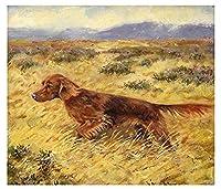 数字で描くアイリッシュセッター犬の数字で描く大人の子供のためのDIYデジタル絵画初心者のための壁の装飾の描画ギフト