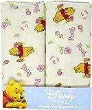 Disney Baby Winnie the Pooh 2-Pk Receiving...
