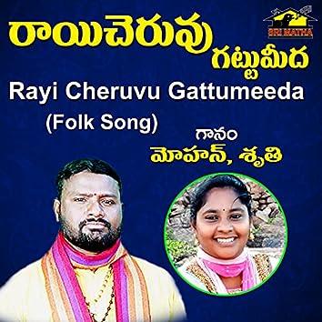 Rayi Cheruvu Gattumeeda
