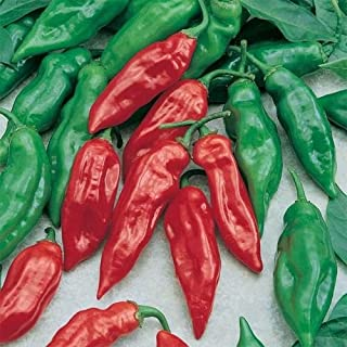 David`s Garden Seeds Pepper Hot Habanero Mayan Red SL6789 (Red) 50 Non-GMO, Open Pollinated Seeds