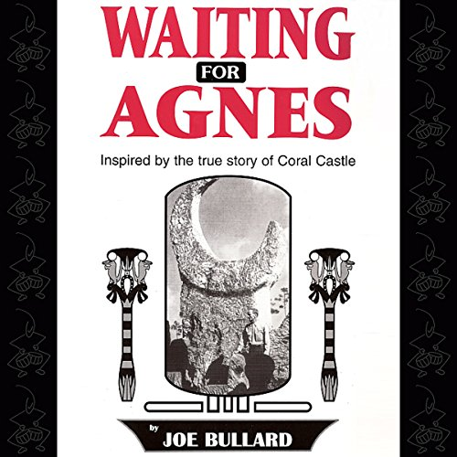 Waiting for Agnes audiobook cover art