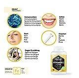 Zoom IMG-2 vitamaze vitamina c ad alto