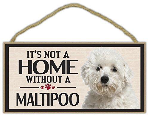 Norma Lily Holz Wandschild: It 's Not a Home Without a Maltipoo (Malteser Pudel) Hunde, Geschenke