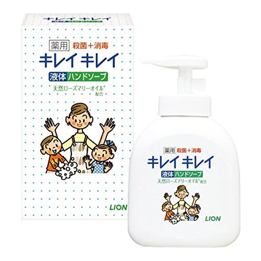絶望的なレバーランドマークキレイキレイ薬用液体ハンドソープ(箱入)【25個セット】