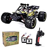 GP TOYS 1:12 Scale RC Cars Remote Control Truck, High Speed 42 Km/h All Terrains Electric Toy Off Road Waterproof RC Monster Crawler with 2 Batteries for Boys Kids and Adults(Hobbyist Grade)