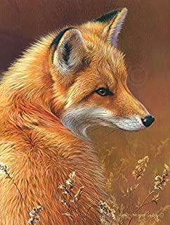 Curious Red Fox a Fine Art Print by Joni Johnson-Godsy, Image Size: 8x10, Overall Size: 11x14