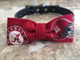 Alabama Dog Bow Tie #2