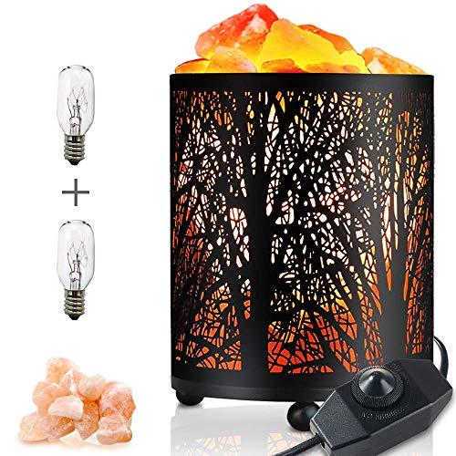 Lampe Sel Himalaya Naturel, Lampe Pierre de Sel Cristal Lampe d'ambiance Contrôle de Luminosité Lampes Table Chevet Purificateur d'air Aide Sommeil Veilleuse Cadeau Sain, 2 Ampoules (white)
