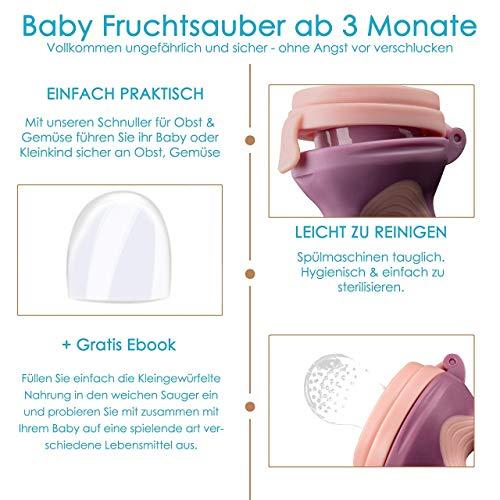 2 Fruchtsauger Baby + 1 Baybylöffel für Baby ab 3 Monate & Kleinkind + Zertifikat + 6 Silikon-Sauger in 3 Größen – BPA-frei – Schnuller Beißring für Obst Gemüse Brei Beikost + Gratis Ebook - 4
