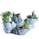 SUN-E Conca Blu Oceano Set di Base in Ceramica Set di Piante succulente Cactus Vaso da Fiori Vaso da Fiori Contenitore Fioriera con Foro di drenaggio Idea Regalo Perfetta Set di 4