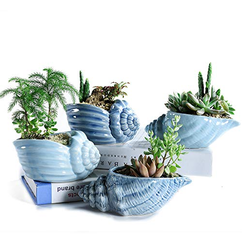Sun-E 5.5 Inch Blue Conch Ocean Series Ceramic Base Serial Set Succulent Plant Pot Cactus Plant Pot Flower Pot Container Planter with Drainage Hole Idea 4 in Set(Plants Not Included)