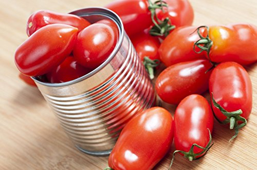 Graines de tomate Roma 380mg BIO Martino ~ Certifié rare Heirloom italien