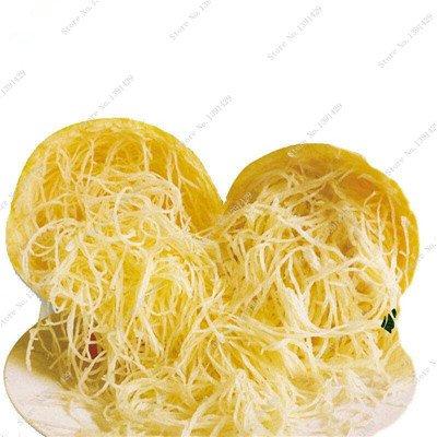Graines de citrouille rares Cucurbita fil d'or de citrouille non-OGM légumes jardin Bonsai plantes ornementales semences Escalade 10 Pcs/sac 15