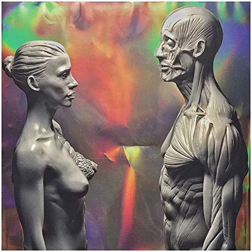 SLRMKK Weibliche & männliche Anatomie Figur - 11 Zoll Anatomie des menschlichen Körpers Figur Modell - Anatomisches Modell des menschlichen Muskelskeletts Skulptur - Referenz für Künstler
