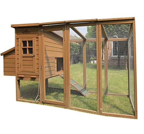 Pets Imperial® Blenheim Poulailler avec cage de 2,5 m et toit en mailles galvanisées pour 4 à 6 oiseaux selon leur taille.