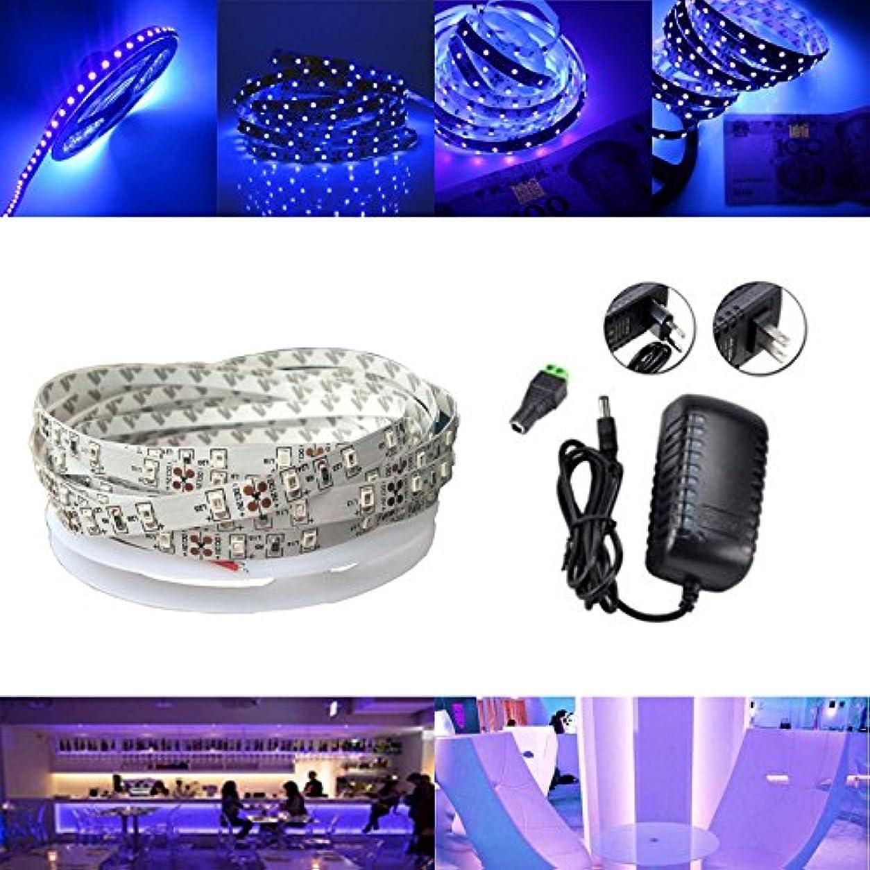 めまい天井滑るYZUEYT 5M UV SMD2835 395-405NMパープル300 LED非防水ストリップライトキット+コネクタ+電源12V YZUEYT (Size : Plug EU plug)