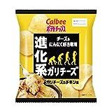 【販路限定品】カルビー ポテトチップス ガリチーズ&チキン味 60g×12袋