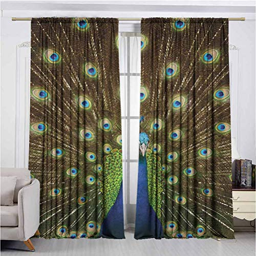Peacock Super Soft Luxury Curtains for Insulated Windows Portrait of Peacock with Feathers Out Vibrant Colors Birds Summer Garden High-Performance Privacy Protection W72 x L72 Inch