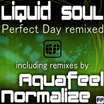 Perfect Day Remixed