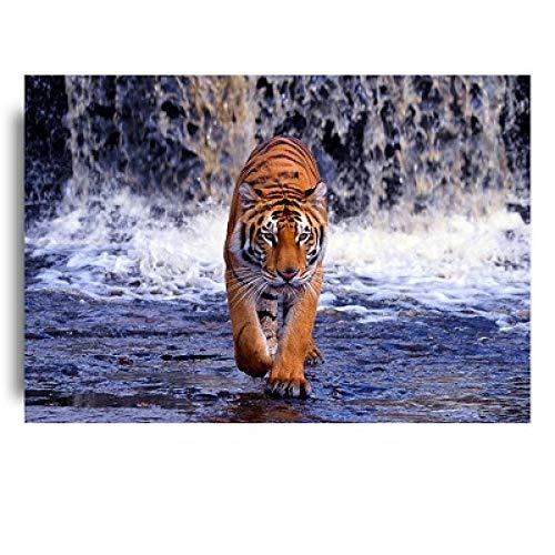Cuadro sobre Lienzo Póster Animales Salvajes Tigre Río Pared Arte Lienzo Pinturas Carteles E Impresiones Animales Pared Arte Imágenes Sala Estar Hogar