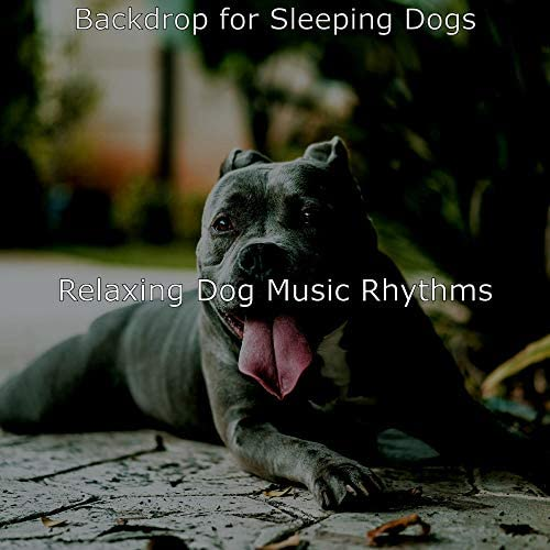 Relaxing Dog Music Rhythms