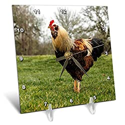 3dRose dc_206265_1 USA, Oregon, Shedd, Thompson Mills State Historic Site, Rooster Desk Clock, 6 by 6