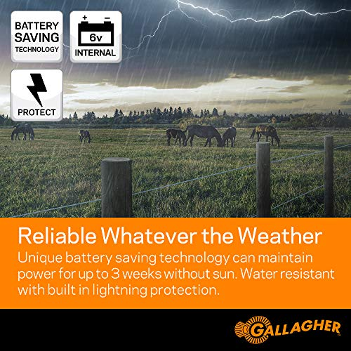 Gallagher S40 Solar Electric Fence Charger   Powers Up To 25 Mile / 80 Acres of Fence   Low Impedance, 0.4 Stored Joule Energizer   Unique Battery Saving Technology   Solar Battery & Leadsets Included