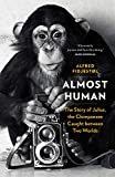 Almost Human: The Story of Julius, the Chimpanzee Caught between Two Worlds
