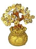 GMMH Feng Shui Glücksbaum Geldbaum Bonsai Pfennigbaum Handarbeit (20 cm)