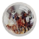 (4 piezas) pomos de cajón para cajones, tiradores de cristal para gabinete con tornillos para armario, hogar, oficina, armario, pintado a mano, caballos, 35 mm