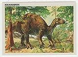 Iguanodon - Dinosaurs: The Mesozoic Era (Trading Card) # 18 - Redstone Marketing 1993 Mint