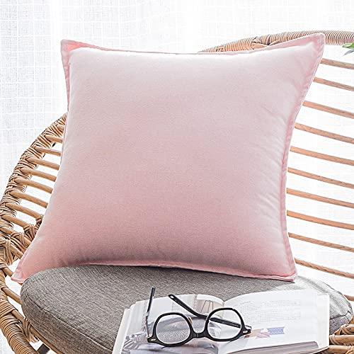 LDRHUY Federe per Cuscino Confezione da 2 Coperture Copricuscini Decorativi Fodere per Cuscino per Federe Cuscini Divano da Letto Casa (Rosa, 40x40cm)