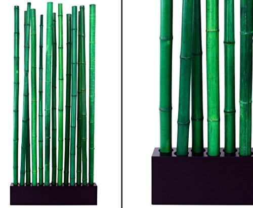 Bambus Raumteiler Paris3 mit ca. 90x12x185cm, Sockel und 13 Rohre grün 5 bis 6cm - Sichtschutzzaun Sichtschutzzäune Blickschutz aus Bambus Raumabtrennung Paravent