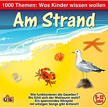 1000 Themen - Was Kinder wissen wollen: Am Strand