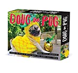 Doug the Pug 2022 Box Calendar, Daily Desktop
