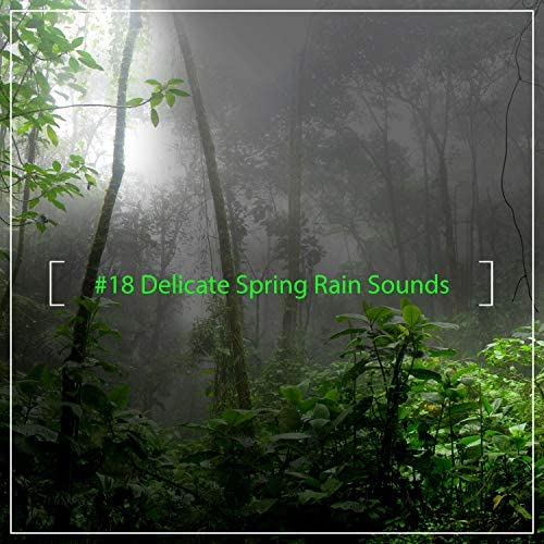 Echoes Of Nature, Rainforest Sounds & Soothing Nature Sounds