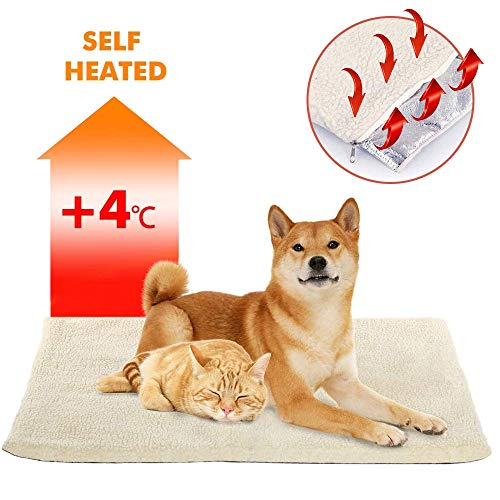 Onebarleycorn - Selbstheizende Decke für Katzen & Hunde, Katzendecken Haustierdecke selbstheizend waschbar weiche Wolldecke selbstwärmend Haustierfreundlich, Weiß, 64x49cm