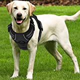 SCENEREAL No Pull Lagre Dog Harness - for Medium Large Dogs Soft...