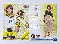 BBM2019プロ野球チアリーダー「華」■レギュラーカード■華81/Mai/Tigers Girls
