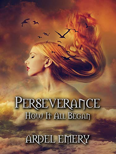 Perseverance: How It All Began by [Rebecca Branch]