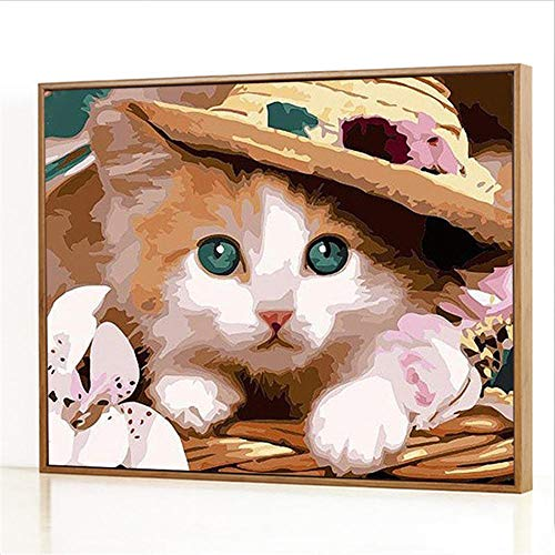 GJJHR DIY Malen Nach Zahlen-öLgemäLde Geschenk FüR Erwachsene Kinder AnfäNger Leinwand öLgemäLde Set-Katze im Hut Gemälde - 40x50cm(Holzrahmen)
