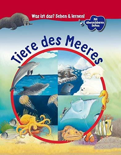 Was ist das? - Tiere des Meeres
