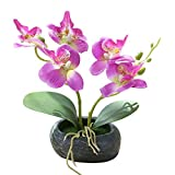 Lsgepavilion Künstliche Schmetterling Orchidee Bonsai Kunstblume Büro Garten Dekoration, violett, Einheitsgröße