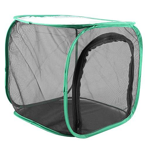 Asixx Zuchtkäfig, Polyester-Garnnetz, belüftetes Schmetterlingshaus, tragbar, faltbar, langlebig, sicher