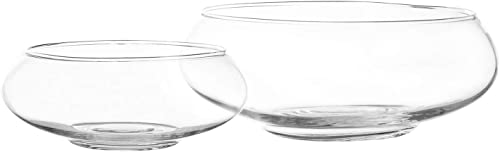 new arrival Royal Imports 2021 Flower Glass Vase, Bowl Terrarium Succulent Planter, Air Plant Display, Decorative Centerpiece Floral Container for Home or Wedding Set 2021 of 2, Clear online sale