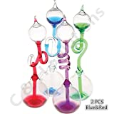 C&H Solutions Colorful Office Thinking Hand Boiler, Glass Science Energy Transfer, Children Science Experiment, Love Birds Color Meter Hand Boiler, 2 Pcs (Blue&Red)