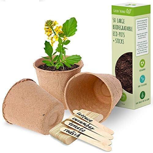 Macetas redondas de fibra biodegradable para plantar, macetas grandes de fibra para decoración, macetas de semillas para interior y exterior y con palitos de madera para etiquetar - (Paquete de 50)