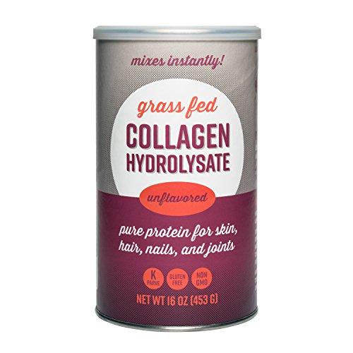 360 Nutrition Collagen Hydrolysate, Unflavored 16 oz 20 Amino Acids | Grass Fed, Non-GMO, Keto & Paleo Friendly | Hydrolyzed Collagen Peptides Protein Powder