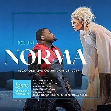 Bellini: Norma (Live)